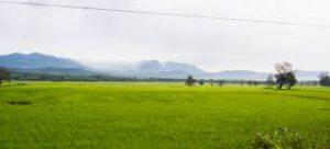 Bababudangiri, Chikamagluru