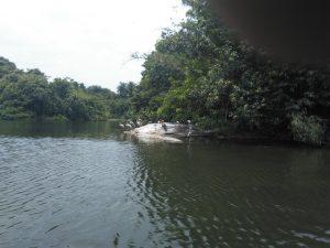 Ranganatitu Bird Sanctuary
